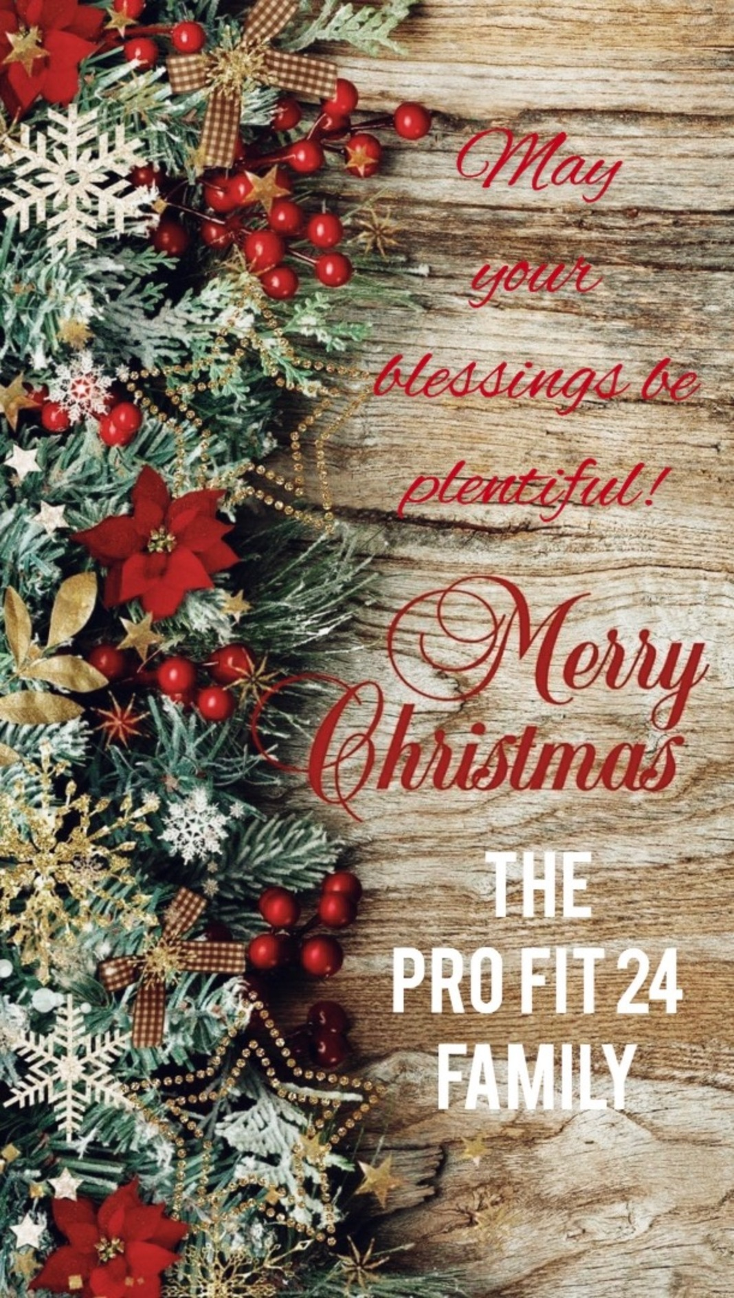🌲Merry Christmas from The Pro Fit 24 Family Image