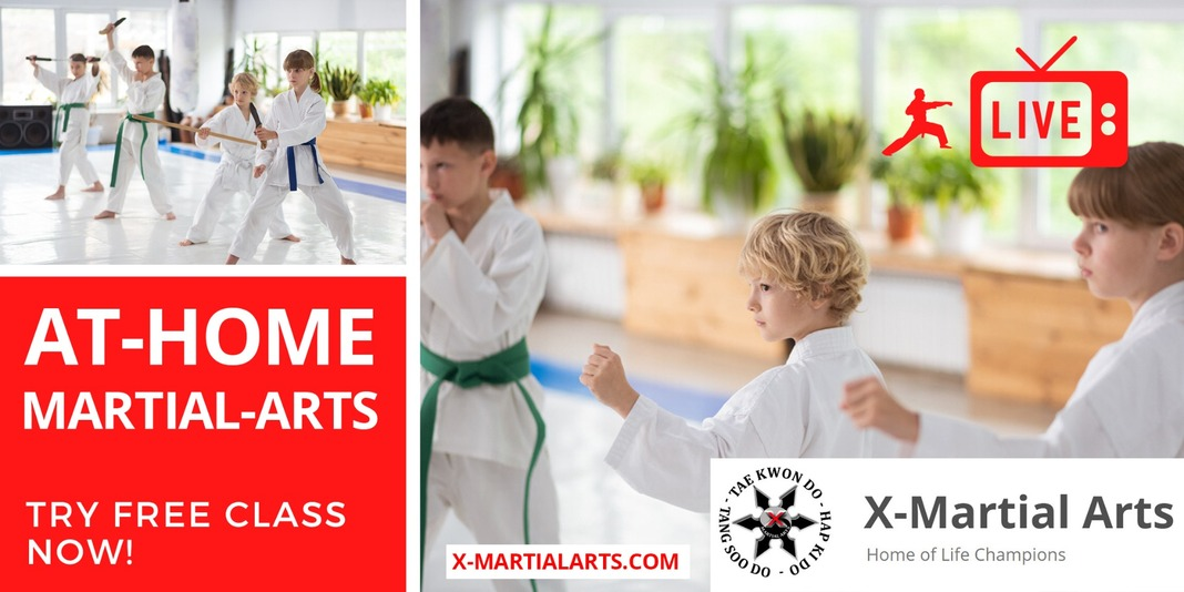 Live Online Martial-Arts for your KIDS 👍 Image