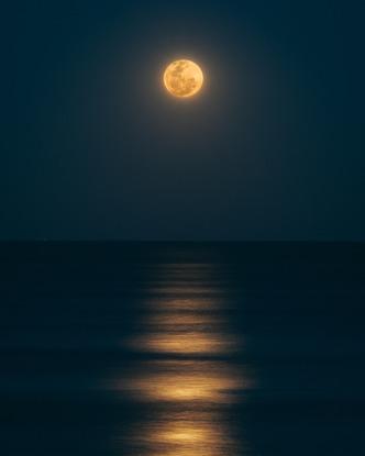 It's the Full Moon tonight! Image