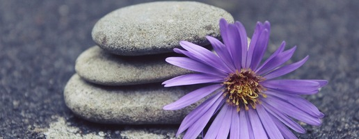 Don't Miss Bedtime Yoga and New Moon Yoga this week! Image